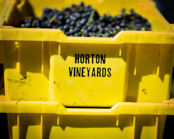 Picture of The Winegrowers of Horton and Early Mountain Vineyards